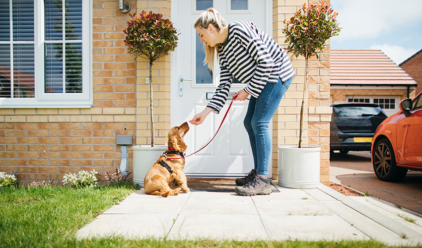 A side-view shot of a caucasian woman giving her dog a treat outside her house, they are about to go on a walk.