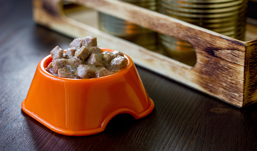 Canned pet food in a orange plastic bowl