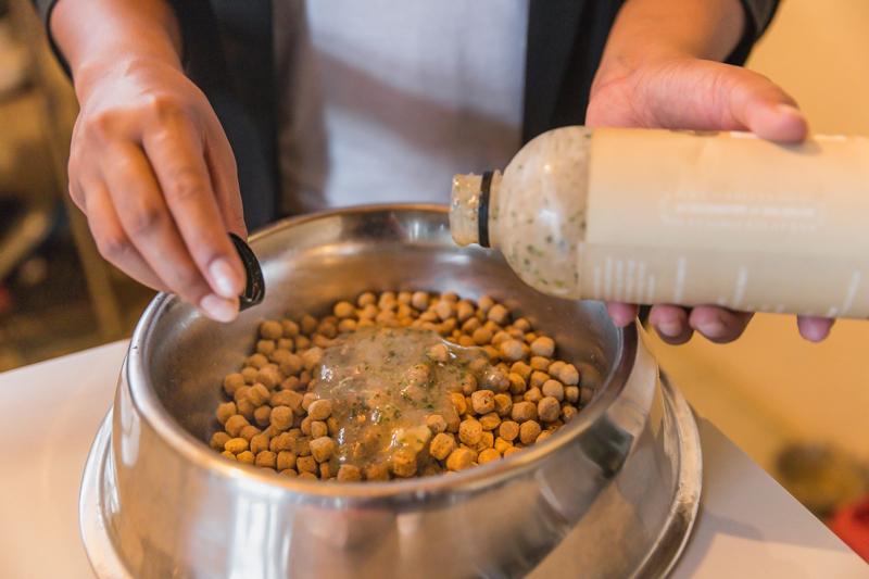 Close up shot of pet owner preparing food for her dog