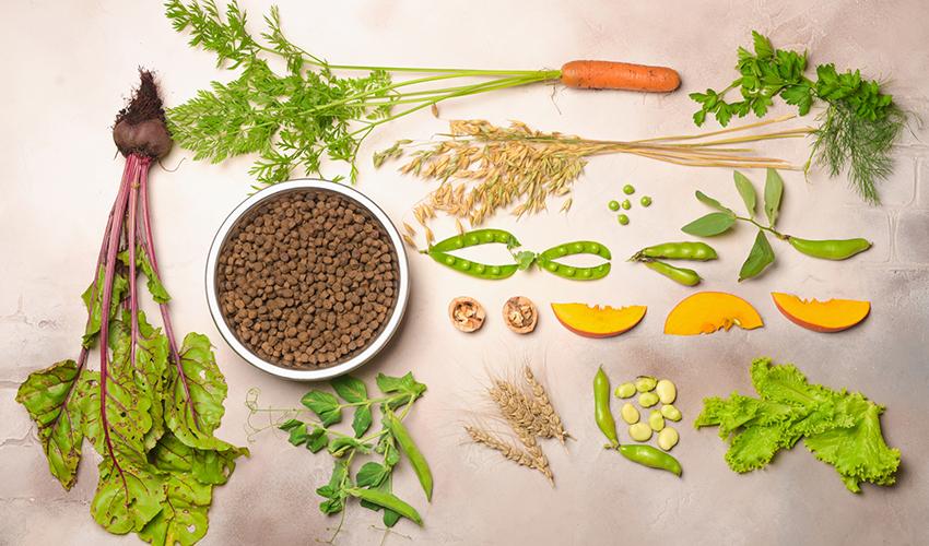 vegan pet food and natural raw ingredients