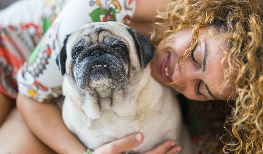 woman and old dog pug hugging